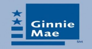Ginnie Mae Pres on Growth: 'Our Systems Are Volume Agnostic'