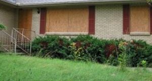 Saving Property Values: Clearboarding vs. Plywood