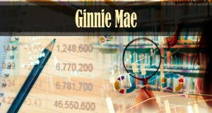 Ginnie Mae: MBS Breaks Annual Issuance Record